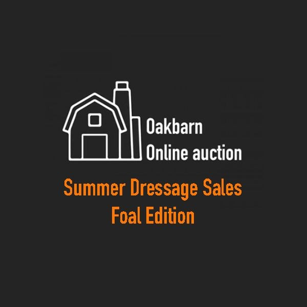 Summer Dressage Sales - Foal Auction